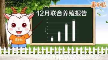 报告主人:养羊啦12月联合养殖报告已统计完毕,请检阅!