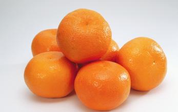 橘子皮的营养价值功效与作用