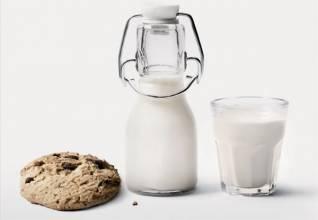山羊奶是母乳的最佳代替品