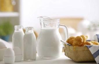 哪些食物能够起到食疗养胃的作用