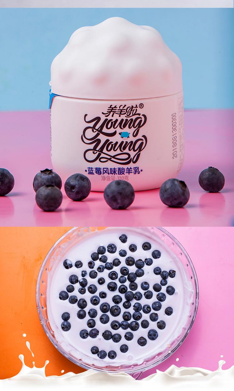 风味酸羊乳蓝莓味_04.jpg