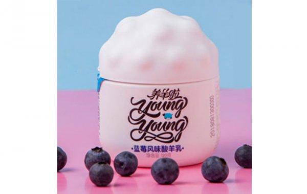 蓝莓风味酸羊乳120g/杯