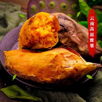 云南高原蜜薯(5斤装)
