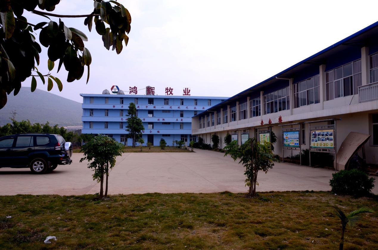 鸿辉牧业1.png
